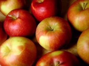 vytriedené jablká na kompót